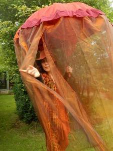 parapluvertellingen lien wilde wortels verhalenvertelster voedende verhalen voor jong en oud lien van camp